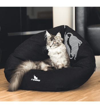 EMI black Cat Bed
