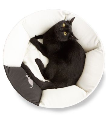OTI Cat Bed + EMI black Cat Bed
