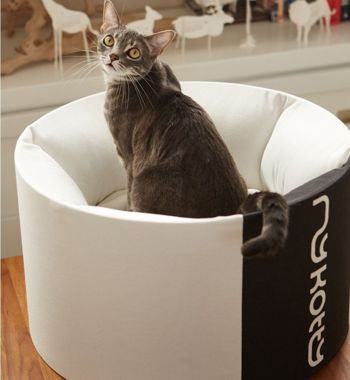 OTI Cat Bed + EMI white Cat Bed