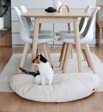 SET Beds OTI+EMI + Pillow PADI